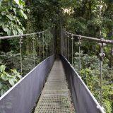 bridge-2124896_1280
