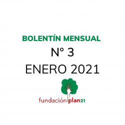 Boletín-Mensual-3-ENERO-2021
